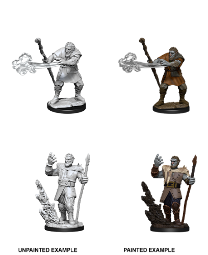 Male Firbolg Druid: D&D Nolzur's Marvelous Unpainted Miniatures